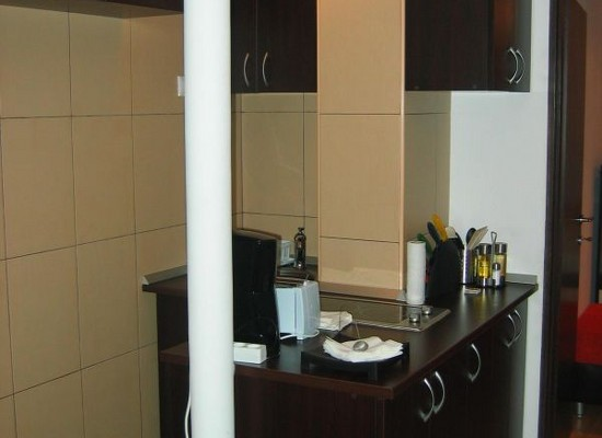 Appartement deux pieces region Dorobanti Bucarest, Roumanie - DOROBANTI 14 - Image 3