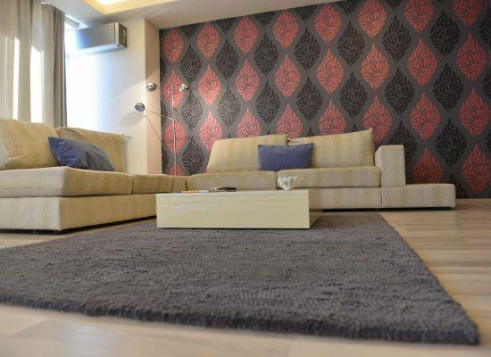 Appartement trois pieces region Aviatiei Bucarest, Roumanie - HERASTRAU 4 - Image 3