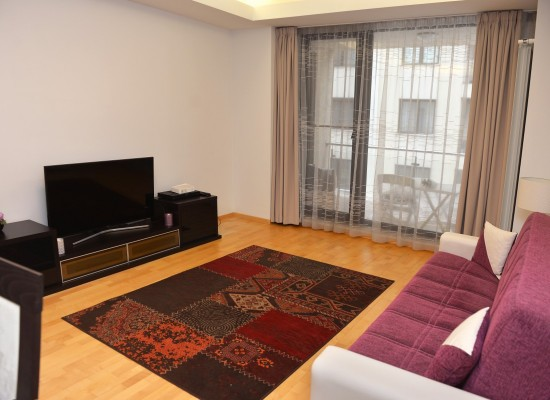 Apartment one bedroom area Aviatiei Bucharest, Romania - HERASTRAU 6 - Picture 2