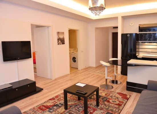 Apartment one bedroom area Aviatiei Bucharest, Romania - HERASTRAU 7 - Picture 4